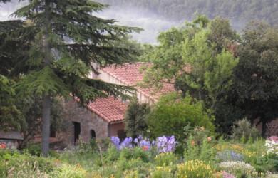 Wyjazdy i posty Św Hildegardy
